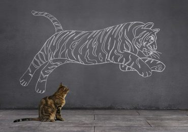 Dream of Tabby Cat: Being Tiger