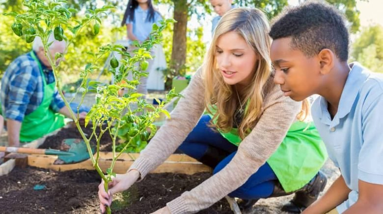 Teaching Sustainability Practices