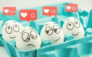 egg_carton